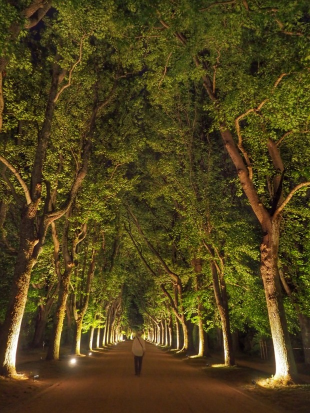 Serralves, a contemporary art museum in Porto, offers special night tours of its expansive gardens
